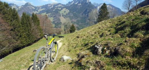Programme d'entrainement cycliste en juillet